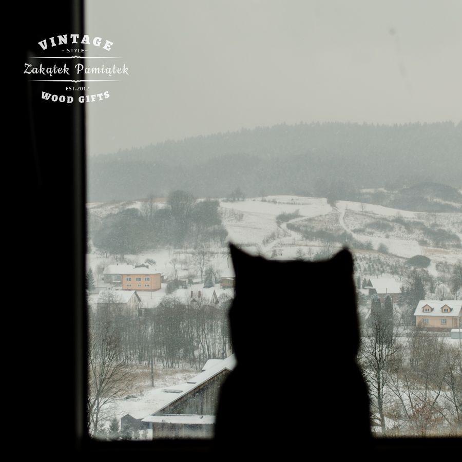 Maksiu w oknie