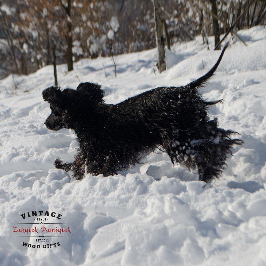 Półmetek ferii zimowych Domaradz 2018