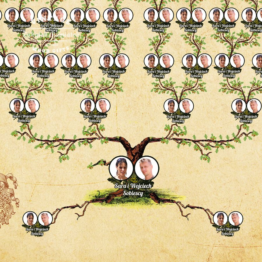 Drzewo pozbawione korzeni upada, człowiek też, genealogia