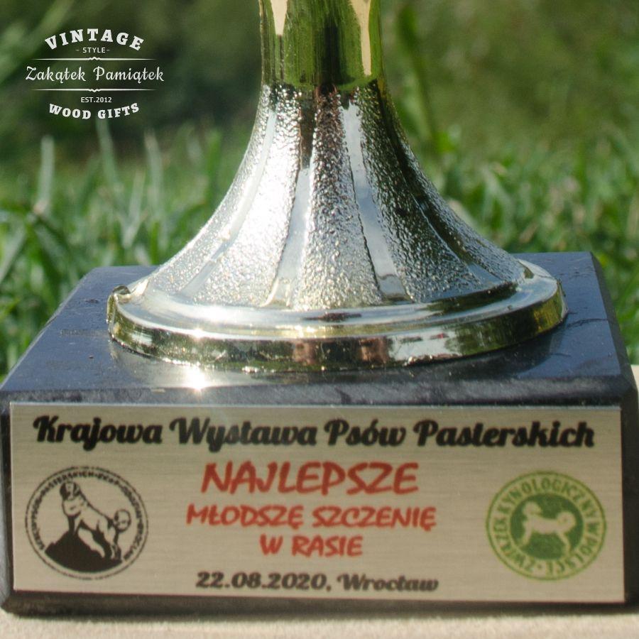 Wystawa Psów Pasterskich Wrocław 2020